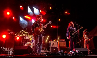 TheSheepdogs11_WEB