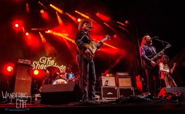 TheSheepdogs6_WEB
